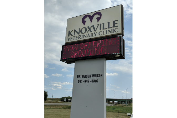 Welcome To Knoxville Veterinary Clinic